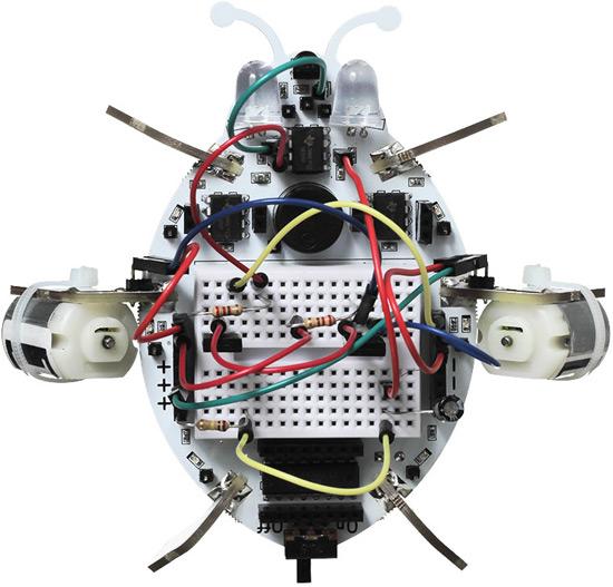 Робожук - конструктор для изучения основ робототехники