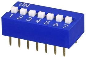DS01C-254-L-07BE