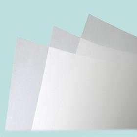 Лавсановые листы 0,5 х 200 х 300 мм (белый)