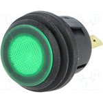 R13527D2B02BG, Переключатель кнопочный 2 SPST-NO зеленый 50мОм