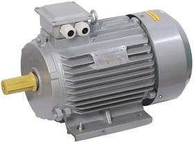 Электродвигатель АИР DRIVE 3ф 132M8 380В 5.5кВт 750об/мин 1081 ИЭК DRV132-M8-005-5-0710