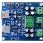 Аудио стерео усилитель TPA3116D2 (XH-M422)