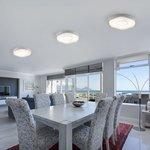Фото 3/6 40011/1 LED / потолочный светильник белый