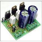 NM2038, Усилитель НЧ одноканальный 44 Вт (конструктор)