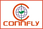Connfly electronic (Zhenqin)