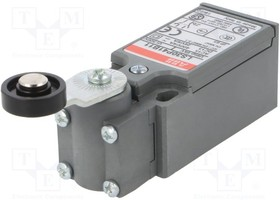 Выключатель конечный LS30P41B11