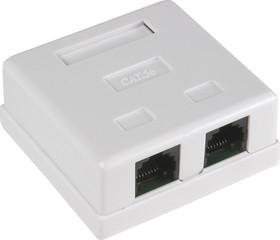 HCT-401 (FD-6166) ( 03-0151), Розетка 8P8C (RJ45) компьютерная двойная неэкранированная 5cat   купить в розницу и оптом