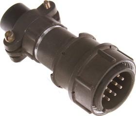 Фото 1/2 2РМДТ24КПН10Ш5В1, Вилка на кабель с прямым патрубком для неэкранированного кабеля
