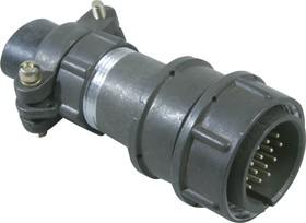 Фото 1/3 2РМТ24КПН19Ш1В1, Вилка на кабель с прямым патрубком для неэкранированного кабеля
