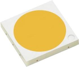 L150-5070502400000, COOL-WHITE 70 CRI 24V