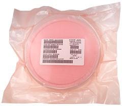 IRFC024NB, Кристалл IRFR024N