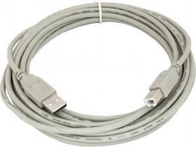 Кабель USB2.0 USB A (m) - USB B (m), 5м, серый