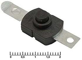 PBS101C395 1.5A 250V