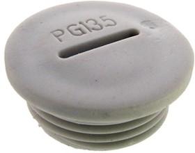 Заглушка PG13.5 Серый пластик