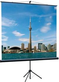 Экран LUMIEN Eco View LEV-100101, 150х150 см, 1:1, напольный