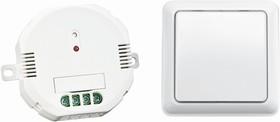 AWST-8800 ACM-1000 (71120 2), Набор: встраиваемый радио-выключатель + беспроводной настенный выключатель макс. 1000 Вт