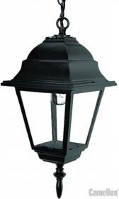 4205 С02 (Черный) Светильник улично-садовый 230В 60Ватт
