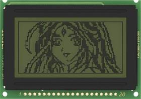 MT-12864J-2FLG