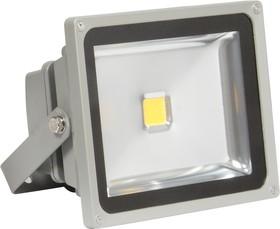 Фото 1/2 601-301(PFL-10W/CW/ GR)(LFL-C-10CW), Прожектор уличный LED, Cold White, 10W, IP65