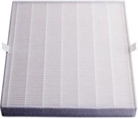 A1030099, Комбинированный фильтр 250-CF