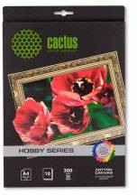 Холст CACTUS CS-СA426010, для струйной печати, A4, 300г/м2, 10 листов
