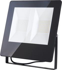 Фото 1/5 011 FL LED / Прожектор 100W 6500K IP65