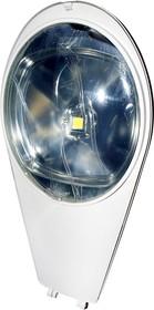 FER106, 30Вт 2700K Warm White уличный светильник светодиодный