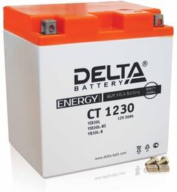 CT1230, Аккумулятор свинцовый 12B-30Ач 168х126х175 (для мототехники)