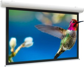 10103538, Экран PROJECTA Проекционный экран настенно-потолочный, 16:10, мат бел отраж, 220х141, кайма 5, диаг, PROJECTA ELEC | купить в розницу и оптом