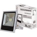 601-322(PFL-30W/CW/GR) (SQ0336-0207), Прожектор уличный LED ...