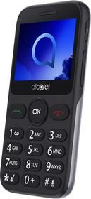 "Фото 1/7 Мобильный телефон Alcatel 2019G серебристый моноблок 1Sim 2.4"" 240x320 Thread-X 2Mpix GSM900/1800 GSM1900 FM microSD max32Gb"
