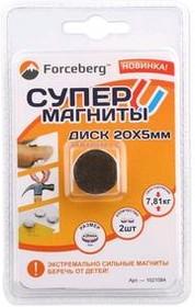 Неодимовый магнит - диск 20×5 мм (2 шт) | купить в розницу и оптом