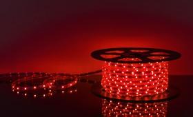 Фото 1/2 30Led-7.2W-IP65-220V красный, Лента светодиодная 1 метр, 30SMD(5050)/m, 7.2Вт/м, 220В