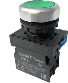 NP8-10BND/3 110-230VAC, Кнопка без фиксации зеленая с подсветкой OFF-(ON)