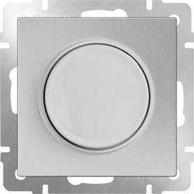 WL06-DM600/Диммер (серебряный)