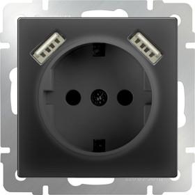 WL08-SKGS-USBx2-IP20 / Розетка с заземлением, шторками и USBх2 (черный матовый)