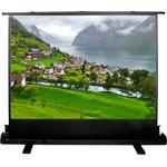 Экран Cactus 102x180см FloorExpert CS-PSFLE-180X102 16:9 ...