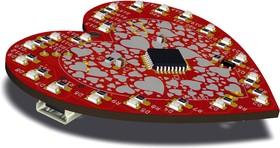 RDC1-0009, Цифровое сердце