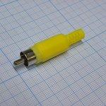 RCA 4004 Y(4005), Тюльпан желтый