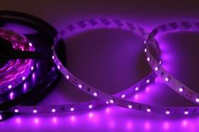 Фото 1/3 141-337, LED лента открытая, 8мм, IP23, SMD 3528, 60 LED/m, 12V, розовая