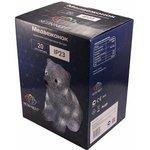 """Фото 2/2 513-313, Акриловая светодиодная фигура """"Медвежонок"""" 17х24х29 см, 4,5 В, 3 батарейки AA (не входят в комплект)"""