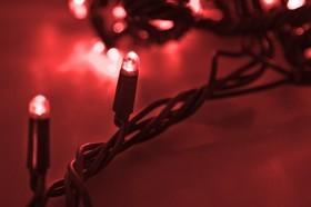 """Фото 1/3 303-322, Гирлянда """"Твинкл Лайт"""" 20 м, черный КАУЧУК, 240 диодов, цвет красный"""