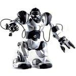 TT313, Робот-человек