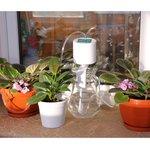 MT4016, Система автоматического полива растений Автолейка
