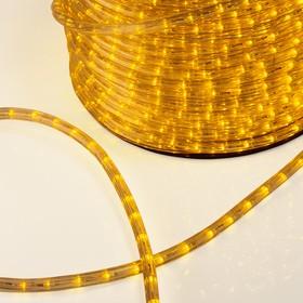 Фото 1/2 121-251, Дюралайт LED, эффект мерцания (2W) - желтый, 36 LED/м, бухта 100м (за 1 м)