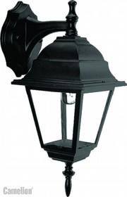 4202 С02 (Черный) Светильник улично-садовый 230В 60Ватт