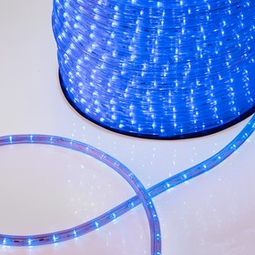 Фото 1/4 121-123, Дюралайт LED, постоянное свечение (2W) - синий, 36 LED/м, бухта 100м (за 1 м)