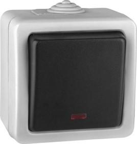 V01-43-Z12-S (Выключатель кноп. с инд.(Grey), в сб. Marin)