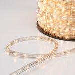 Фото 2/3 121-326-4, Дюралайт LED, свечение с динамикой (3W) - ТЕПЛЫЙ БЕЛЫЙ, 24 LED/м, бухта 100м (за 1 м)