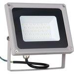 006 FL LED 30W 6500K IP65, Прожектор светодиодный